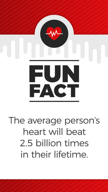 FunFacts_HeartBeat