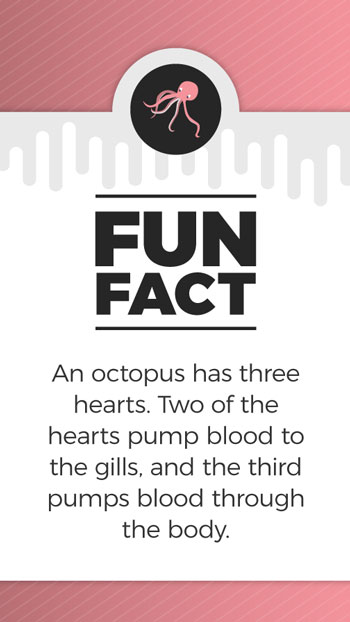 FunFacts_Octopus