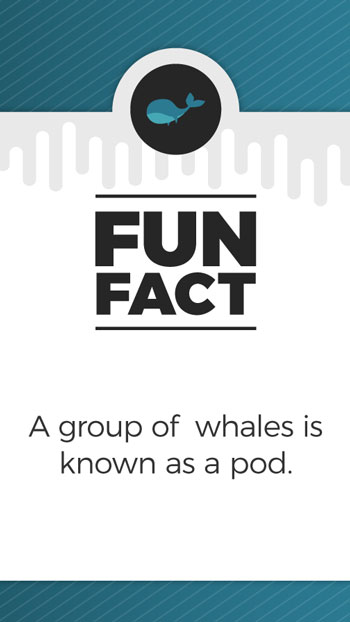 FunFacts_Whales